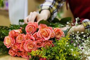Как вырастить розу в своем саду?